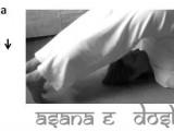 copertina vpk_asana e dosha